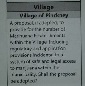 What is the Proposal on my Village ballot?